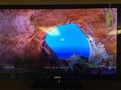 """SANYO 24"""" LED 720p TV DP24E142"""